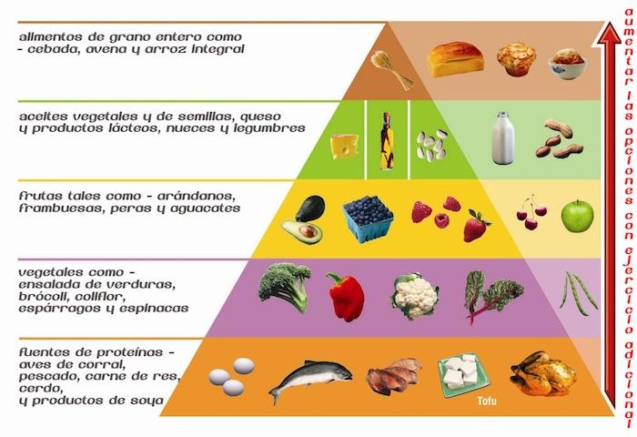 Pirámides de alimentos Dieta Atkins