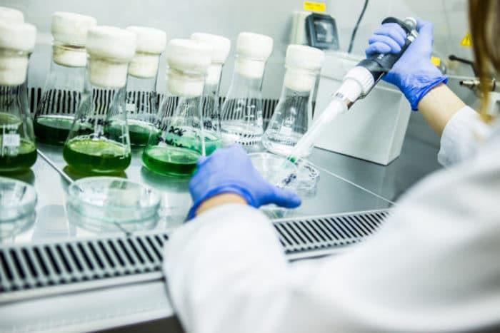 ¿Hay alguna evidencia de que los trasplantes de células madre podrían beneficiar a las personas con síndrome de la enfermedad de Lyme después del tratamiento?