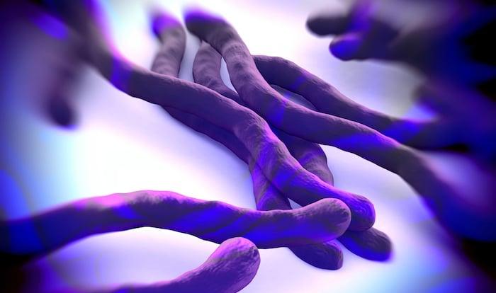 ¿Pueden los antibióticos ayudar con el síndrome de la enfermedad de Lyme posterior al tratamiento?