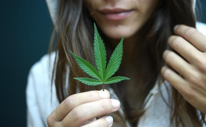 Transpiration persistante après avoir cessé de consommer de la marijuana