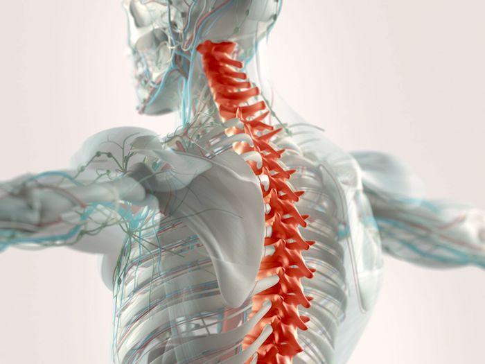 الآثار الطويلة الأجل لجراحة الجنف