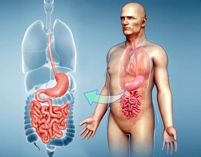 Frecuentes movimientos intestinales seguidos por estreñimiento: ¿es culpable el síndrome del intestino irritable?