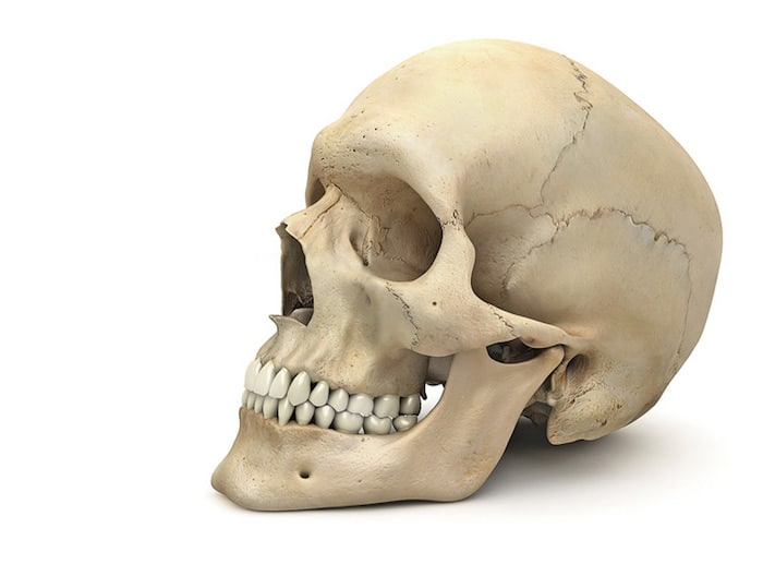 Sons croquants à la base du crâne