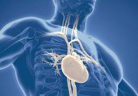 Qual é a relação entre doença cardíaca e doença gengival?