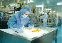 Evaluación de la seguridad de la hidroxipropil metilcelulosa (Hypropmellose o E464) como ingrediente alimentario