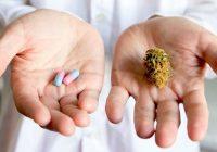 Interações medicamentosas com cannabis