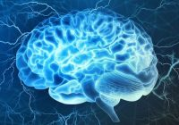 """Os """"pequenos canais"""" no crânio permitem que o tecido cerebral lesionado recrute ajuda rapidamente."""