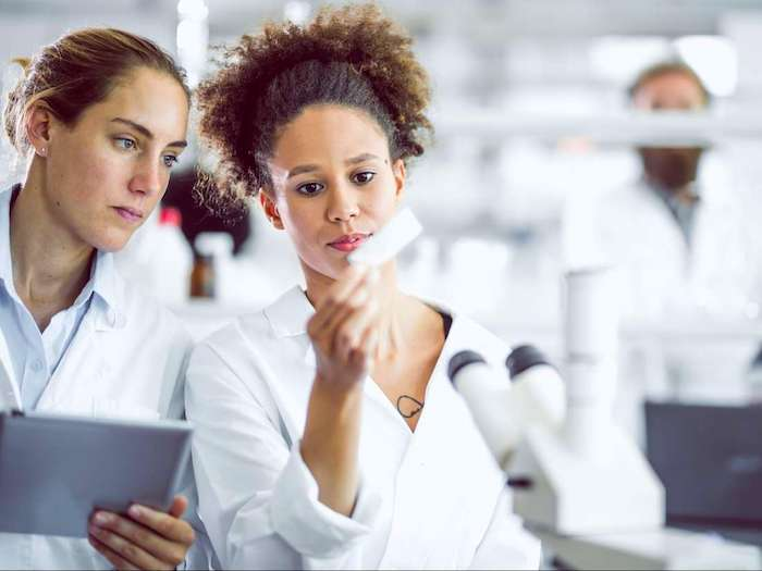 """Das neu entdeckte """"Mikroorgan"""" ist das """"Hauptquartier"""" der Immunantwort"""