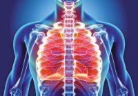 Akute Bronchitis: Brauchen Sie wirklich Antibiotika?