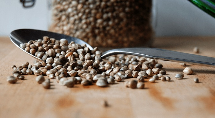 Las semillas de cáñamo son una fuente completa de proteínas que proporcionan los nueve aminoácidos esenciales