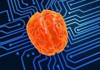 Pesquisadores testaram recentemente os circuitos cerebrais envolvidos na esquizofrenia