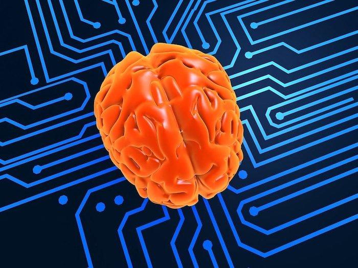Los investigadores probaron recientemente los circuitos cerebrales implicados en la esquizofrenia