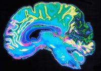 Una nueva investigación sugiere que hay un factor central que impulsa todos los rasgos negativos de la personalidad: el factor D
