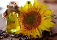 ¿Es el aceite de oliva o aceite de semilla, como el girasol, más saludable?