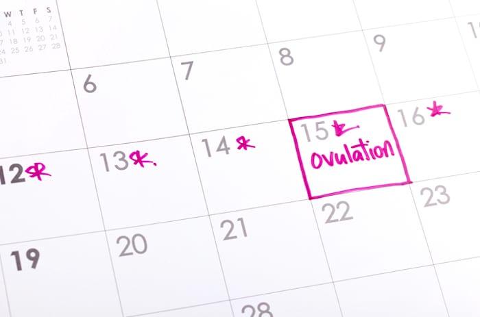 Ovulación después de suspender la píldora anticonceptiva: ¿cuándo volverá su fertilidad?