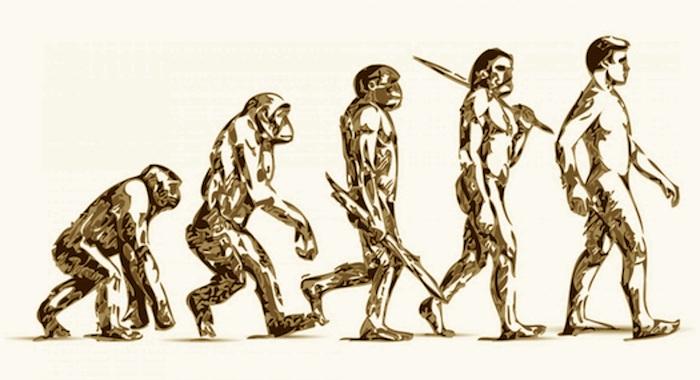 Viren beeinflussten den Austausch von Genen zwischen Neandertalern und Menschen