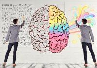 Warum ist es so schwer zu wählen? Eine neue Studie analysiert, was im Gehirn passiert.