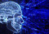 Laut neuen Forschungen kann ein hoher Spiegel an Stresshormonen die Funktion des Gehirns beeinträchtigen.