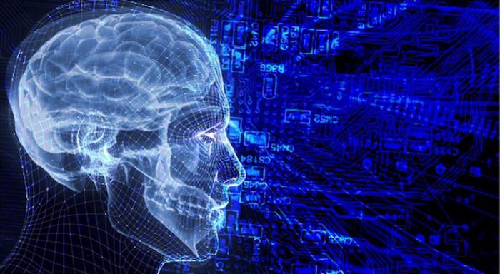 Según una nueva investigación, los niveles altos de hormonas del estrés pueden afectar el funcionamiento del cerebro.