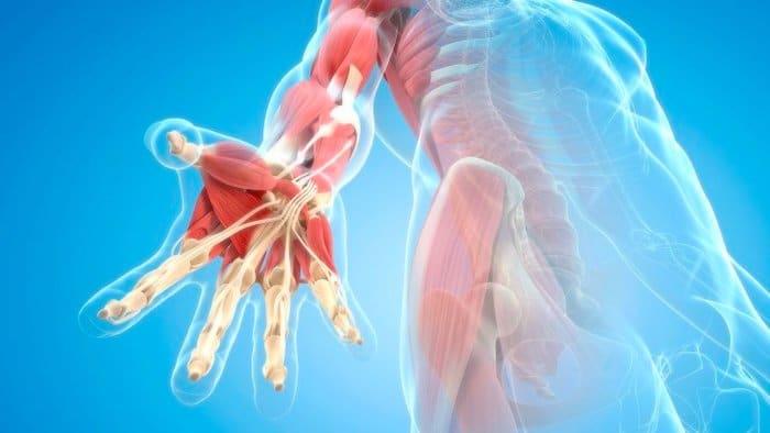 Rheumatoide Arthritis betrifft häufig Hände und Knie