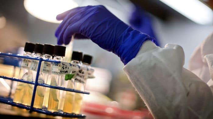 Un nuevo antibiótico ha demostrado su valía en la lucha contra las bacterias resistentes a los medicamentos