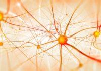 Os danos nos nervos podem ser revertidos?