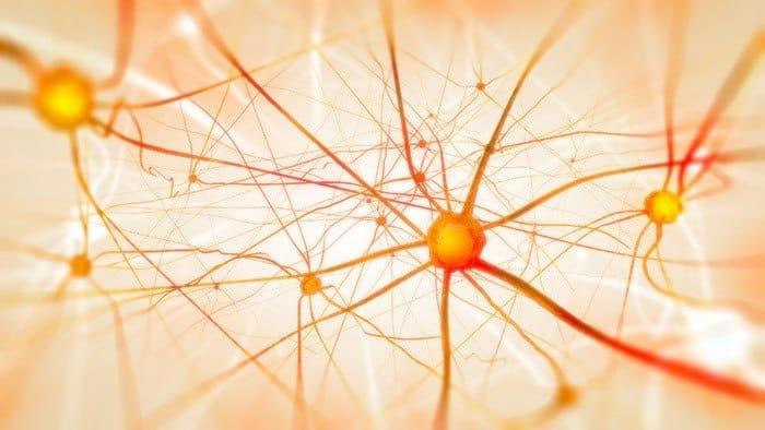 ¿Se puede revertir el daño a los nervios?