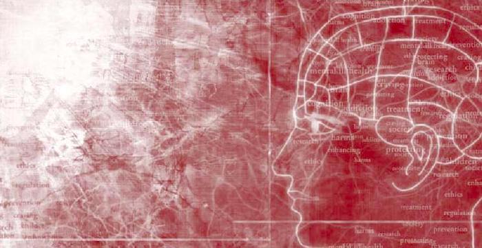 Podemos pensar en nuestro sentido de agencia como algo místico, pero una nueva investigación revela los circuitos cerebrales que sustentan nuestro libre albedrío