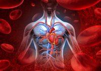تراكم السوائل حول عضلات القلب يؤدي سداد القلب