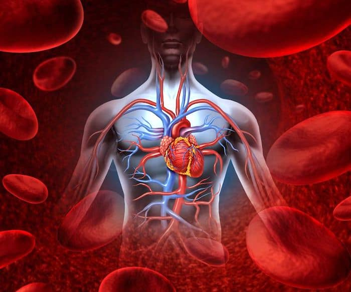 Une accumulation de liquide autour des muscles cardiaques provoque une tamponnade cardiaque