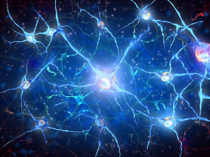 تستكشف دراسة جديدة كيف يمكن للمخ توقع الأحداث وما يحدث مع هذه الآلية في بعض الحالات التنكسية العصبية