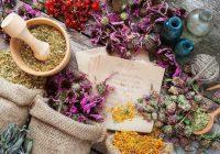 在中世纪,当地的药剂师或聪明的女人提供草药和药水