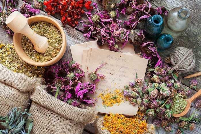في العصور الوسطى ، قدمت الصيدلية المحلية أو المرأة الحكيمة الأعشاب والجرعات