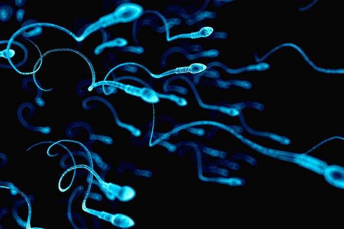 Pourquoi votre sperme est-il liquide? Besoin de voir un médecin à propos de votre éjaculation anormale?