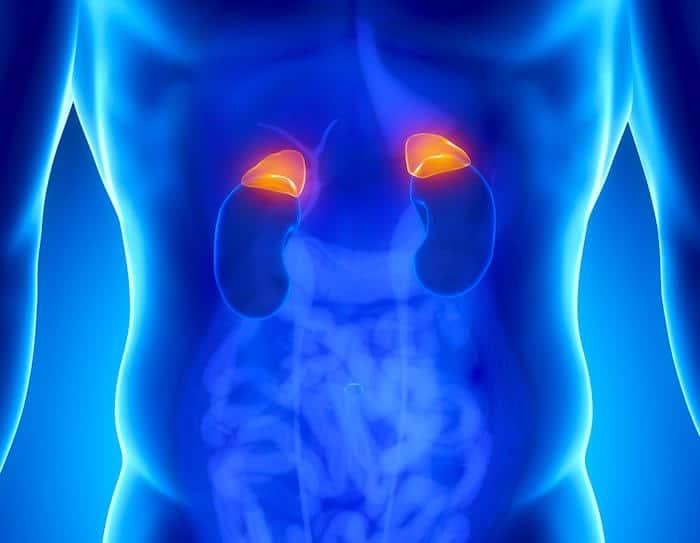 El cáncer suprarrenal puede causar una variedad de síntomas que afectan las hormonas sexuales