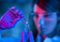 Nova pesquisa impulsiona células T na luta contra o câncer