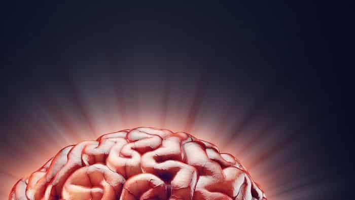 La adicción altera la función de los circuitos de recompensa en el cerebro