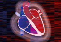 Miocardiopatía hipertrófica obstructiva: causas, síntomas y tratamiento