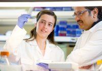 Les chercheurs confirment que dans la maladie de Parkinson, un commutateur moléculaire défectueux déclenche la dégénérescence des neurones