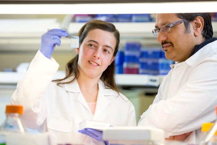 Os pesquisadores confirmam que, no Parkinson, um interruptor molecular defeituoso desencadeia a degeneração dos neurônios