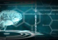 هل هناك صلة بين السكتة الدماغية والتغيرات في البكتيريا المعوية؟