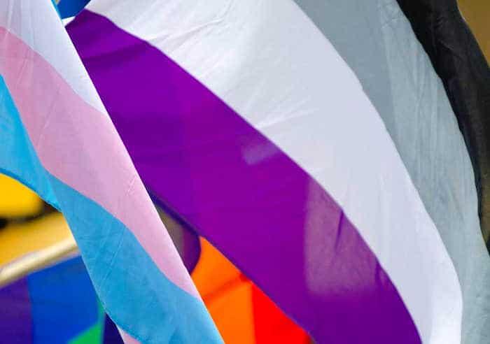 ¿Qué significa ser asexual?